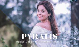 Pyralis Mobile and Desktop Lightroom Presets