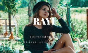 Rayi Lightroom Presets Dekstop and Mobile