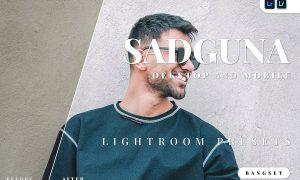 Sadguna Desktop and Mobile Lightroom Preset