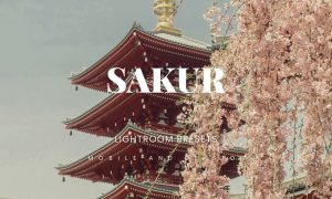 Sakur Lightroom Presets Dekstop and Mobile
