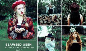 Seaweed Photoshop Action & Lightrom Presets