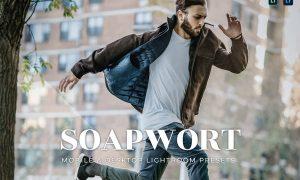 Soapwort Mobile and Desktop Lightroom Presets
