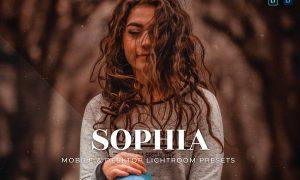 Sophia Mobile and Desktop Lightroom Presets