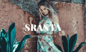 Sranta Lightroom Presets Dekstop and Mobile