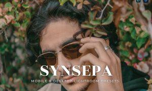 Synsepa Mobile and Desktop Lightroom Presets