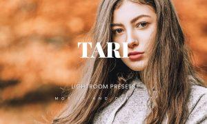 Tari Lightroom Presets Dekstop and Mobile