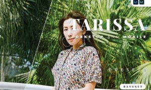 Tarissa Desktop and Mobile Lightroom Preset
