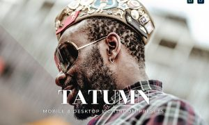 Tatumn Mobile and Desktop Lightroom Presets