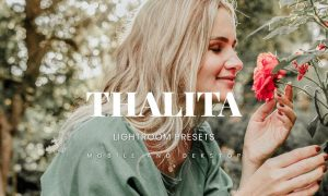 Thalita Lightroom Presets Dekstop and Mobile