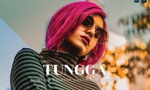 Tungga Mobile and Desktop Lightroom Presets