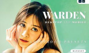 Warden Desktop and Mobile Lightroom Preset