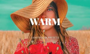 Warm Lightroom Presets Dekstop and Mobile