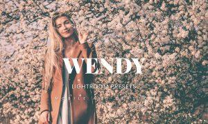 Wendy Lightroom Presets Dekstop and Mobile