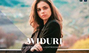 Widuri Mobile and Desktop Lightroom Presets