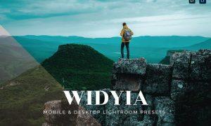 Widyia Mobile and Desktop Lightroom Presets