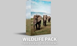 Wildlife | Deluxe Edition for mobile and desktop