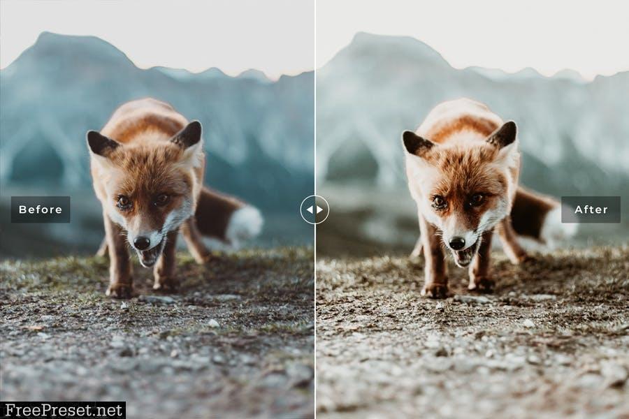 Wildlife Mobile & Desktop Lightroom Presets