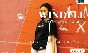Windell Desktop and Mobile Lightroom Preset