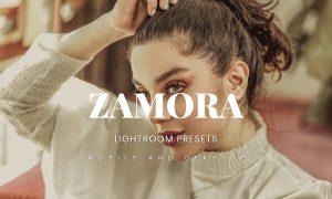 Zamora Lightroom Presets Dekstop and Mobile