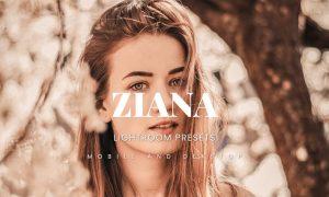 Ziana Lightroom Presets Dekstop and Mobile