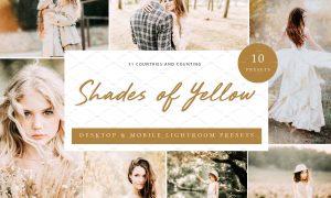 10x Lightroom Presets Shades Yellow 6071356