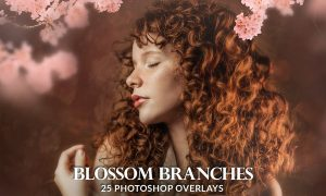 25 Painted blossom branches photo overlays