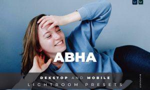 Abha Desktop and Mobile Lightroom Preset