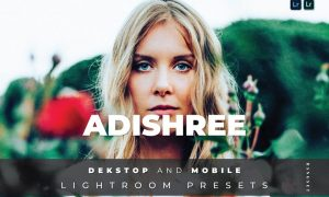 Adishree Desktop and Mobile Lightroom Preset