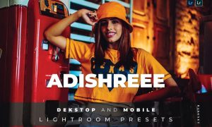 Adishreee Desktop and Mobile Lightroom Preset