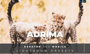 Adrima Desktop and Mobile Lightroom Preset