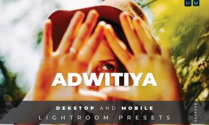 Adwitiya Desktop and Mobile Lightroom Preset