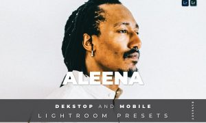 Aleena Desktop and Mobile Lightroom Preset