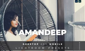 Amandeep Desktop and Mobile Lightroom Preset