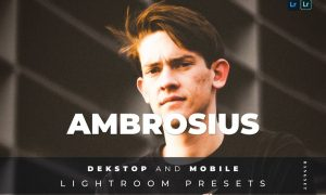 Ambrosius Desktop and Mobile Lightroom Preset