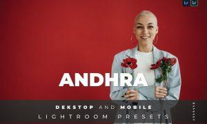 Andhra Desktop and Mobile Lightroom Preset