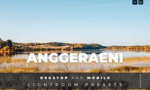 Anggeraini Desktop and Mobile Lightroom Preset