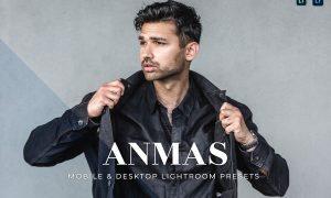 Anmas Mobile and Desktop Lightroom Presets