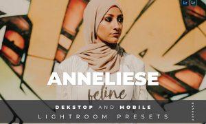 Anneliese Desktop and Mobile Lightroom Preset