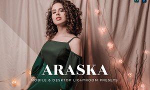 Araska Mobile and Desktop Lightroom Presets