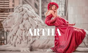 Artha Lightroom Presets Dekstop and Mobile