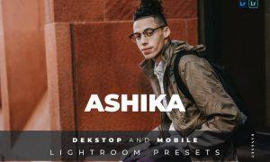 Ashika Desktop and Mobile Lightroom Preset