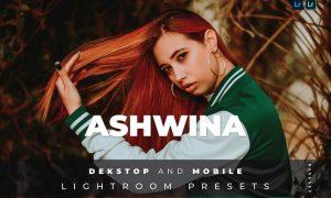 Ashwina Desktop and Mobile Lightroom Preset