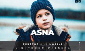 Asna Desktop and Mobile Lightroom Preset