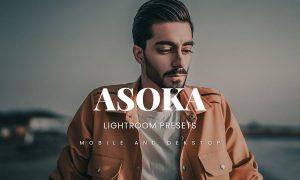 Asoka Lightroom Presets Dekstop and Mobile