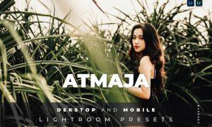 Atmaja Desktop and Mobile Lightroom Preset