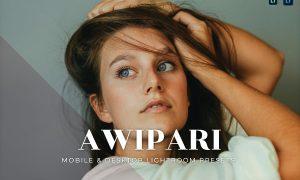 Awipari Mobile and Desktop Lightroom Presets