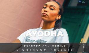 Ayodha Desktop and Mobile Lightroom Preset