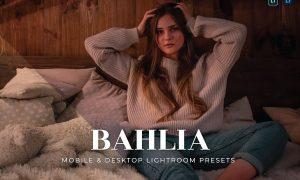 Bahlia Mobile and Desktop Lightroom Presets