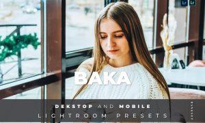 Baka Desktop and Mobile Lightroom Preset