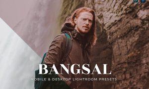 Bangsal Mobile and Desktop Lightroom Presets
